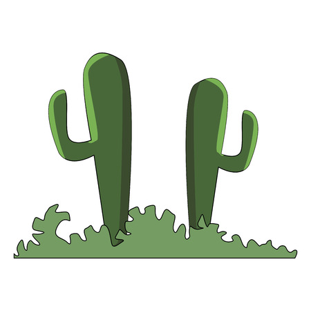 Desert cactus plants vector illustration graphic design