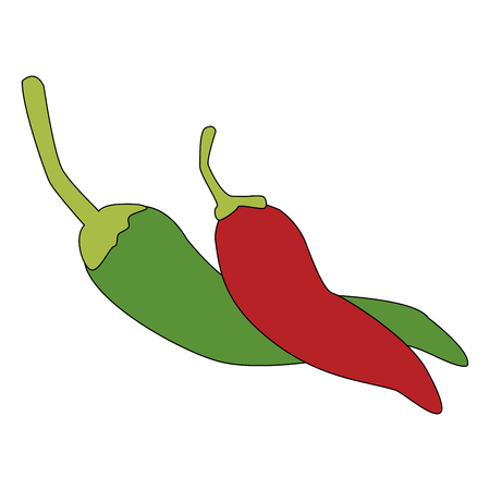 Mexican spicy chilli vector illustration graphic design