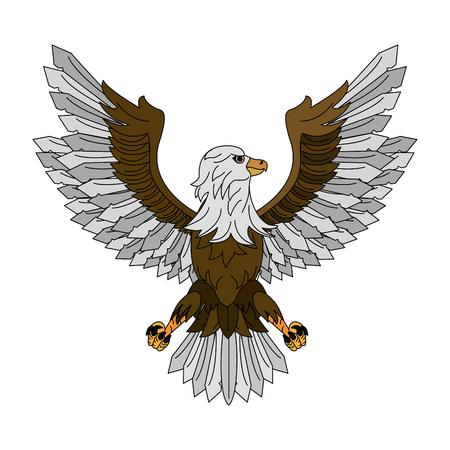 Eagle hawk symbol vector illustration graphic design.