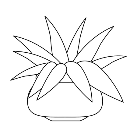 Plant with pot isolated vector illustration graphic design