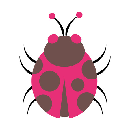 Ladybug cartoon isolated vector illustration graphic design