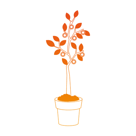 Plant growing on pot on orange lines vector illustration Illustration