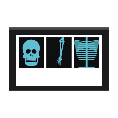 X-ray bones images vector illustration graphic design
