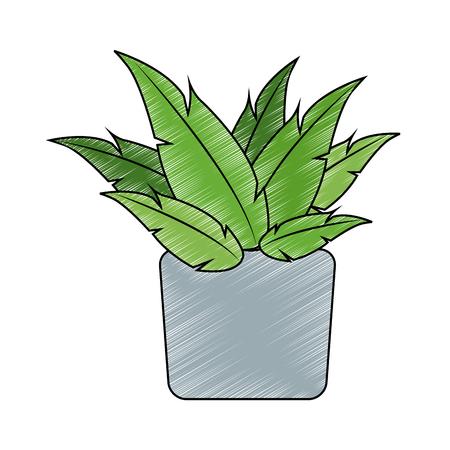 Plant on pot vector illustration graphic design