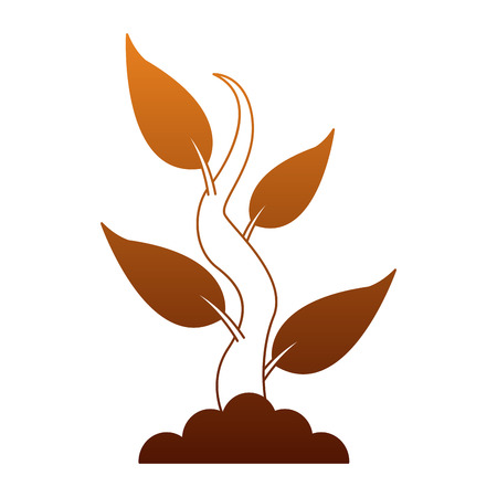 Plant with leaves vector illustration graphic design.