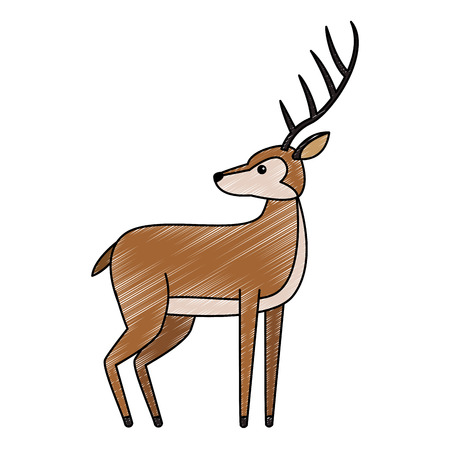 Deer wild animal vector illustration graphic design