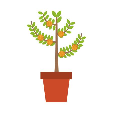 Money plant in pot vector illustration graphic design.