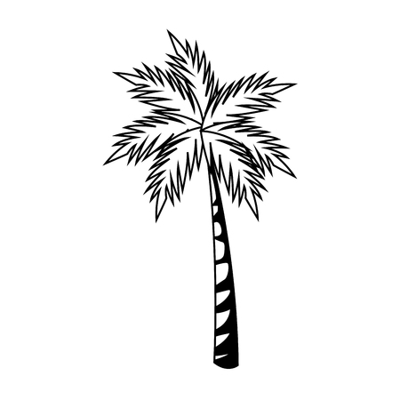 Palm tree isolated vector illustration graphic design Çizim