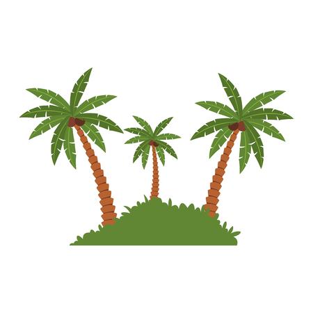 Beach palms with bush vector illustration graphic design