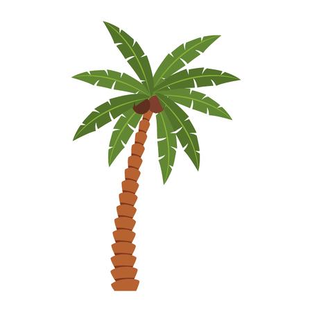 Beach palm tree vector illustration graphic design