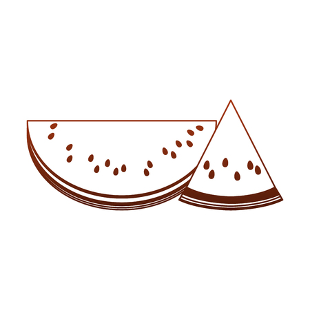 Watermelons sliced fruits vector illustration graphic design