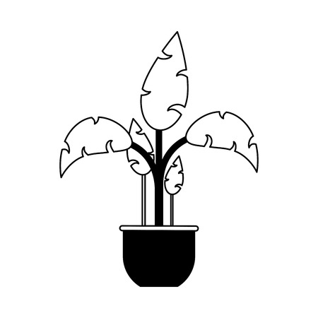 Plant in pot vector illustration graphic design Ilustracja