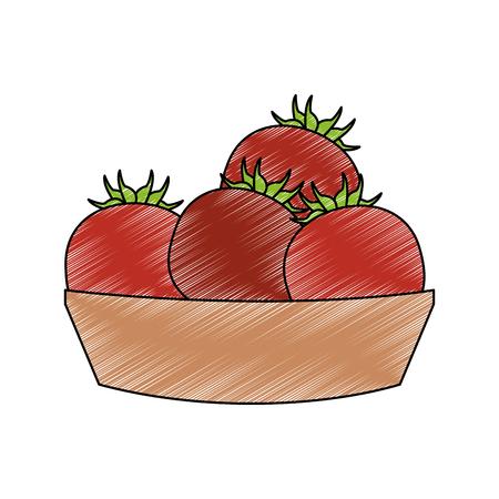 Tomatos on basket vector illustration graphic design