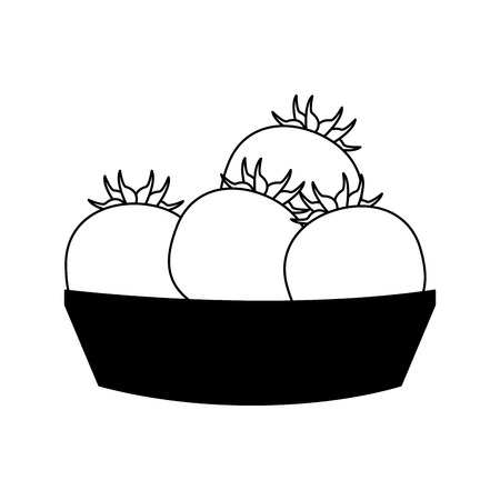 Tomatos on basket vector illustration graphic design vector illustration graphic design