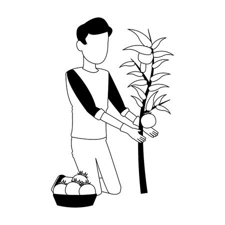 Man with tomato harvest vector illustration graphic design vector illustration graphic design Illustration