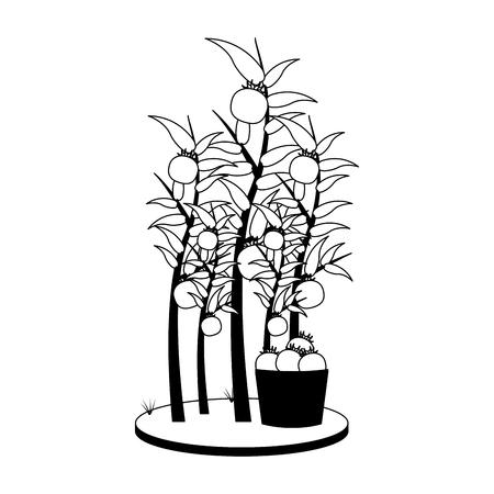 Tomatoes plant harvest vector illustration graphic design