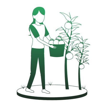 Vrouw met tomaten oogst vector illustratie grafisch ontwerp