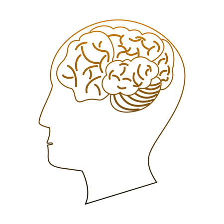 Human brain on head silhouette vector illustration graphic design