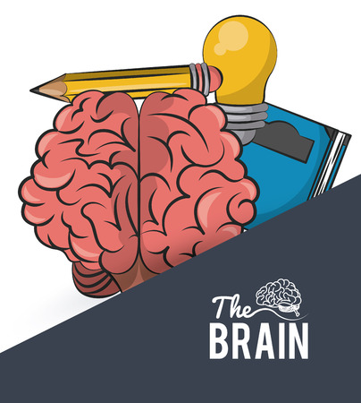 Human brain with book and pencil vector illustration graphic design Illustration