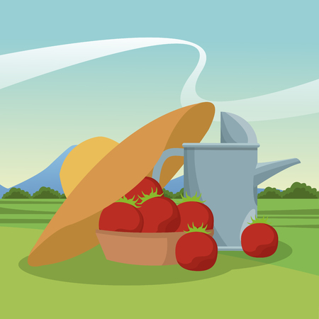 Tomatos in basket with sun hat and water can vector illustration graphic design