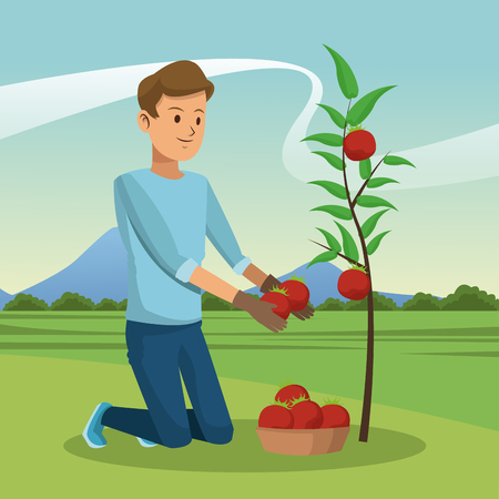 Young man with tomato harvest vector illustration graphic design Vectores