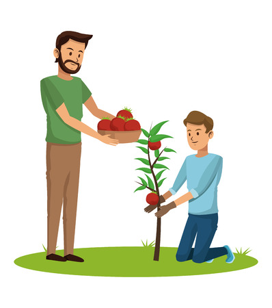 Young mens at tomato harvest vector illustration graphic design