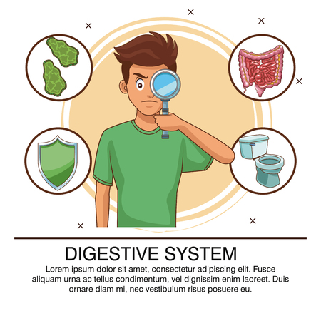 Digestive system poster with information vector illustration graphic design