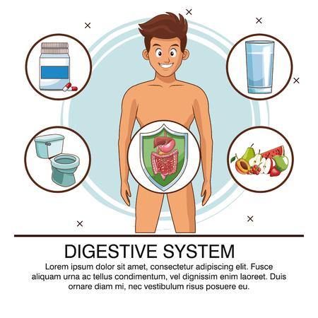 Verdauungssystemplakat mit Informationsvektorillustrationsgrafikdesign Vektorgrafik