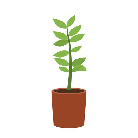 Plant in pot vector illustration graphic design Иллюстрация