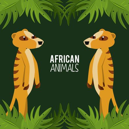 African meerkat animals cartoon vector illustration graphic design Stock Illustration - 105453695