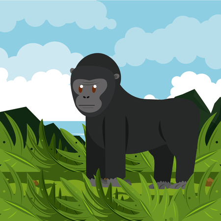 Ape wild african animal in nature vector illustration graphic design