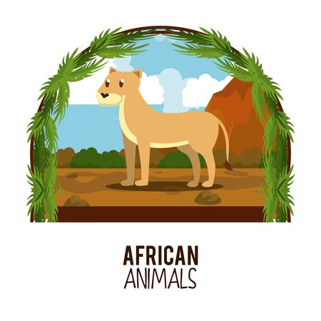 Lioness wilf african animal cartoons vector illustration graphic design