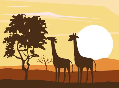 Giraffes african animals silhouetttes at savanna vector illustration graphic design
