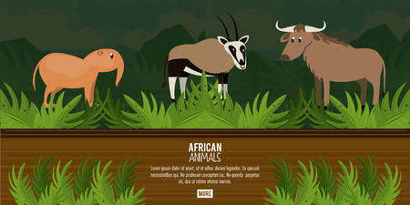African animals concept poster with information vector illustration graphic design Vettoriali