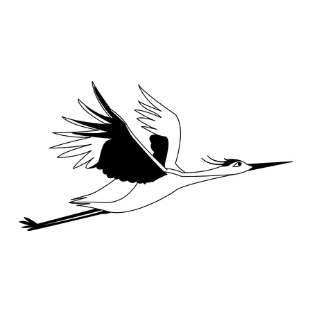 Stork flying isolated vector illustration graphic design