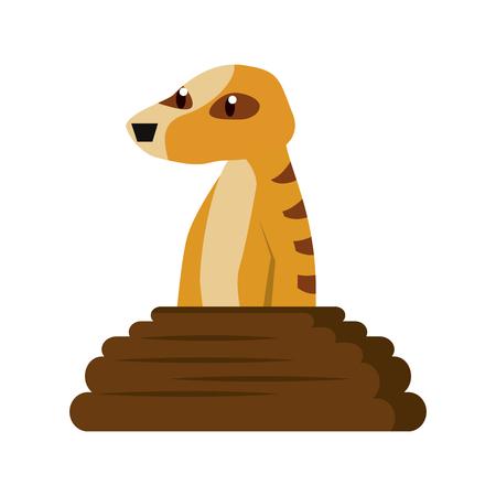 Meerkat wild animal cartoon vector illustration graphic design