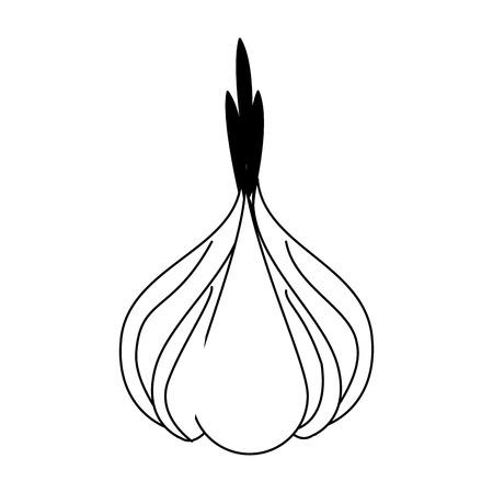 Grafikdesign der frischen und natürlichen Gemüsevektorillustration des Knoblauchs Vektorgrafik
