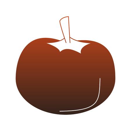 Tomato fresh vegetable vector illustration graphic design