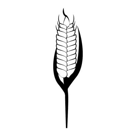 Wheat food symbol vector illustration graphic design Illustration