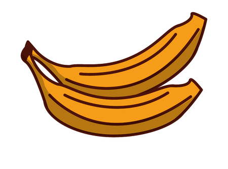 Banans fruits cartoons vector illustration graphic design