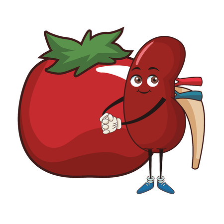 Kidney with tomato funny cartoon vector illustration graphic design