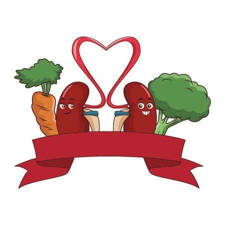 Kidney with vegetables and ribbon banner emblem vector illustration graphic design Stock Illustratie