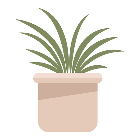 Plat pot isolated vector illustration graphic design