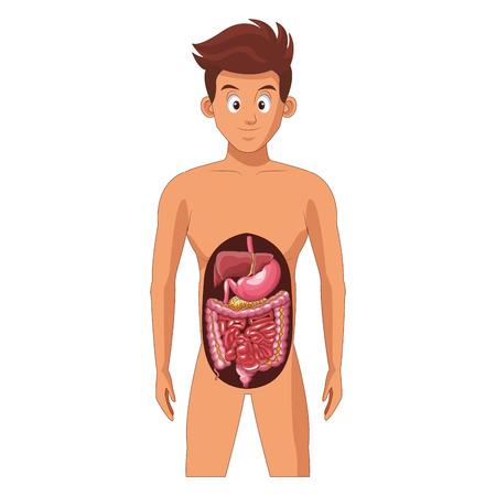 Man digestive system avatar cartoon vector illustration graphic design