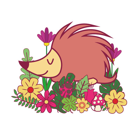 porcupin cute animal cartoon vector illustration graphic design