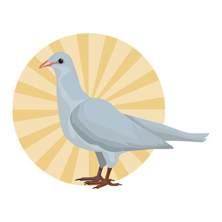 White dove bird round striped icon vector illustration graphic design