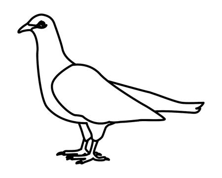 White dove bird in black and white vector illustration graphic design  イラスト・ベクター素材