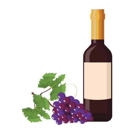Wine bottle and grapes vector illustration graphic design