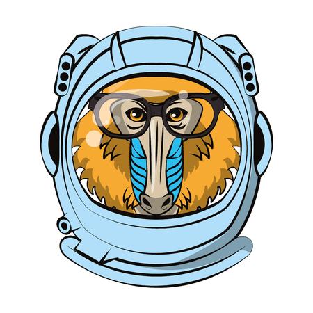 Mandrill inside astronaut helmet vector illustration graphic design