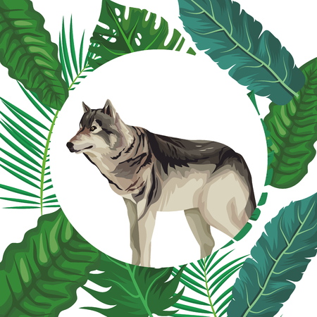 Wolf wild animal round icon over leaves foliage background vector illustration graphic design Vecteurs